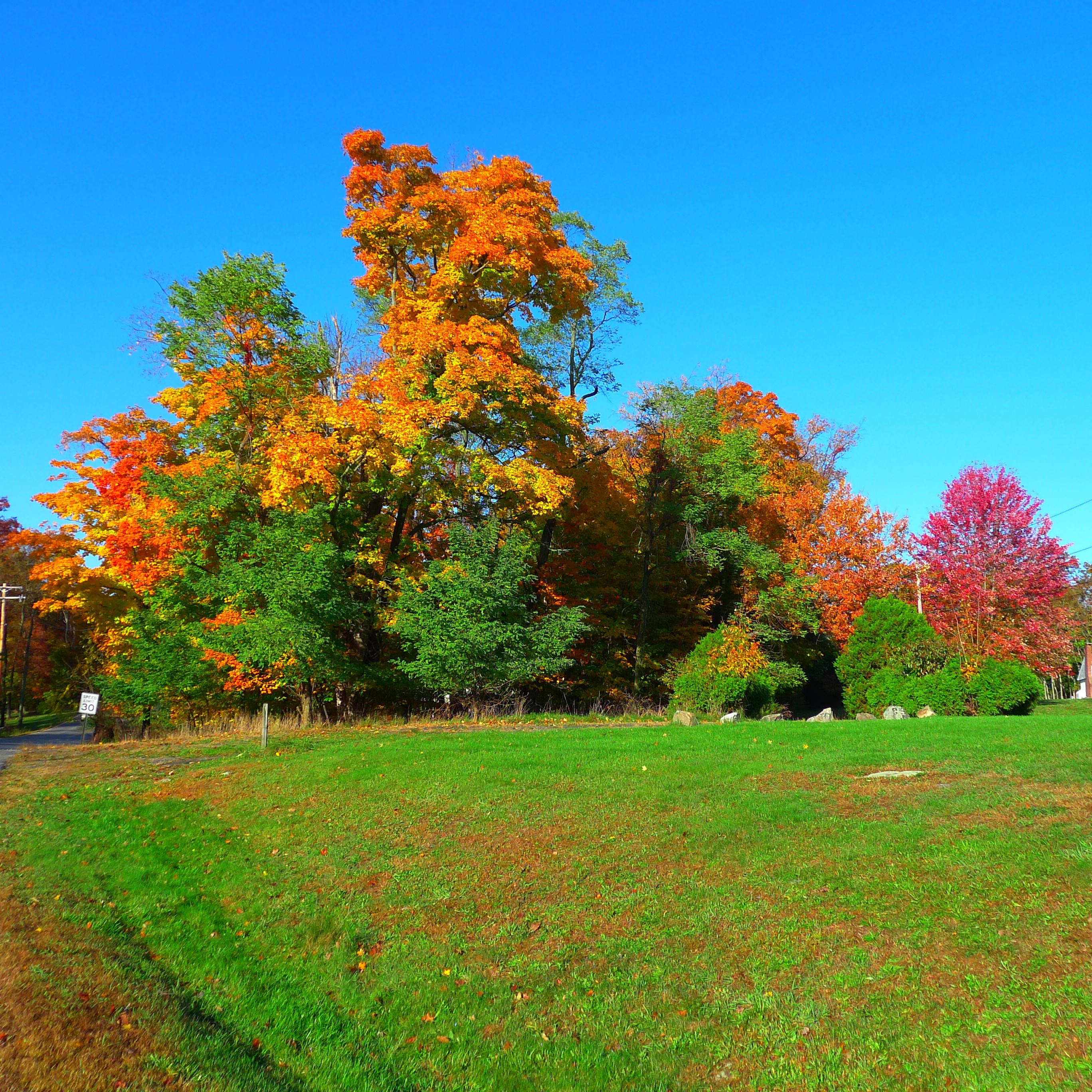 Monroe NY Autumn 2012