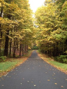 Typical Country Road in New York State
