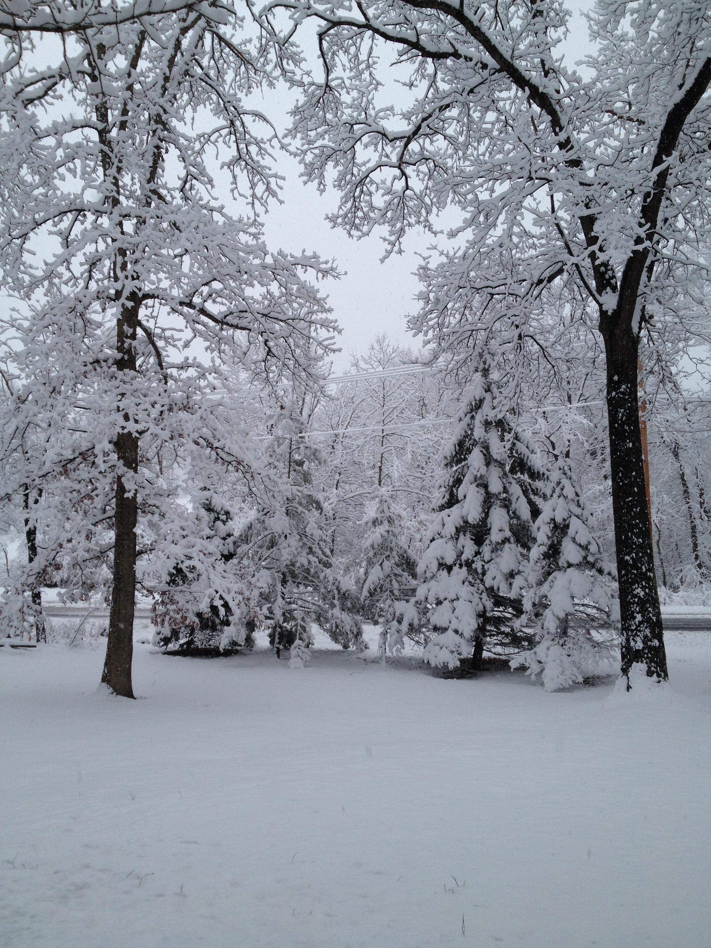 november 2014 snowfall